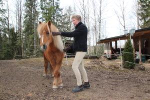 miten saan hevosen peräänantoon